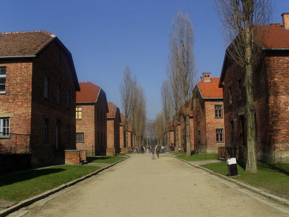 Na zdjęciu jednakowe budynki zczerwonej cegły kryte czerwoną dachówką, ustawione po obu stronach szerokiej alei.