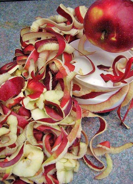Obierkipo jabłkach Obierkipo jabłkach Źródło: Jason Popesku, licencja: CC BY 2.0.