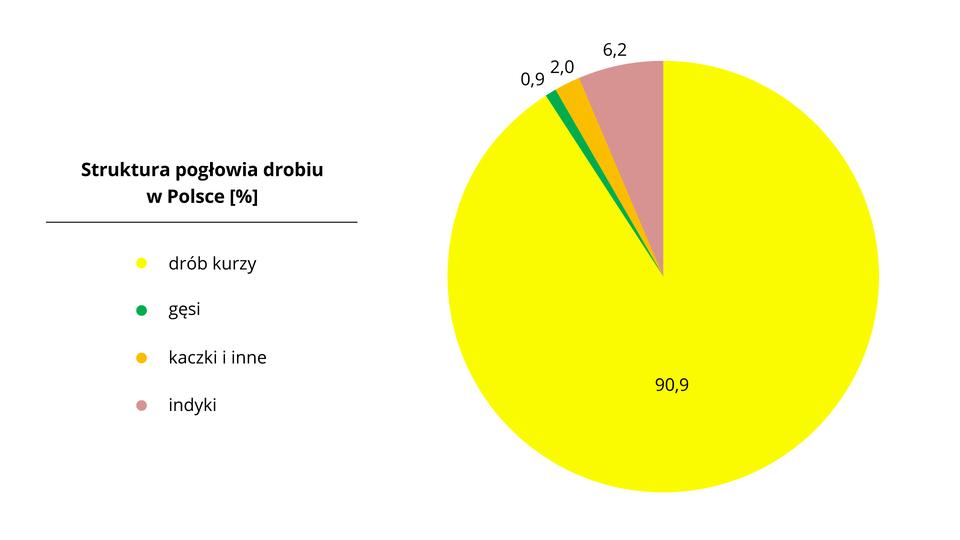 Na ilustracji diagram kołowy – struktura pogłowia drobiu wPolsce. Drób kurzy 90,9%, gęsi 0,9%, indyki 6,2%, kaczki iinne 2,0%.