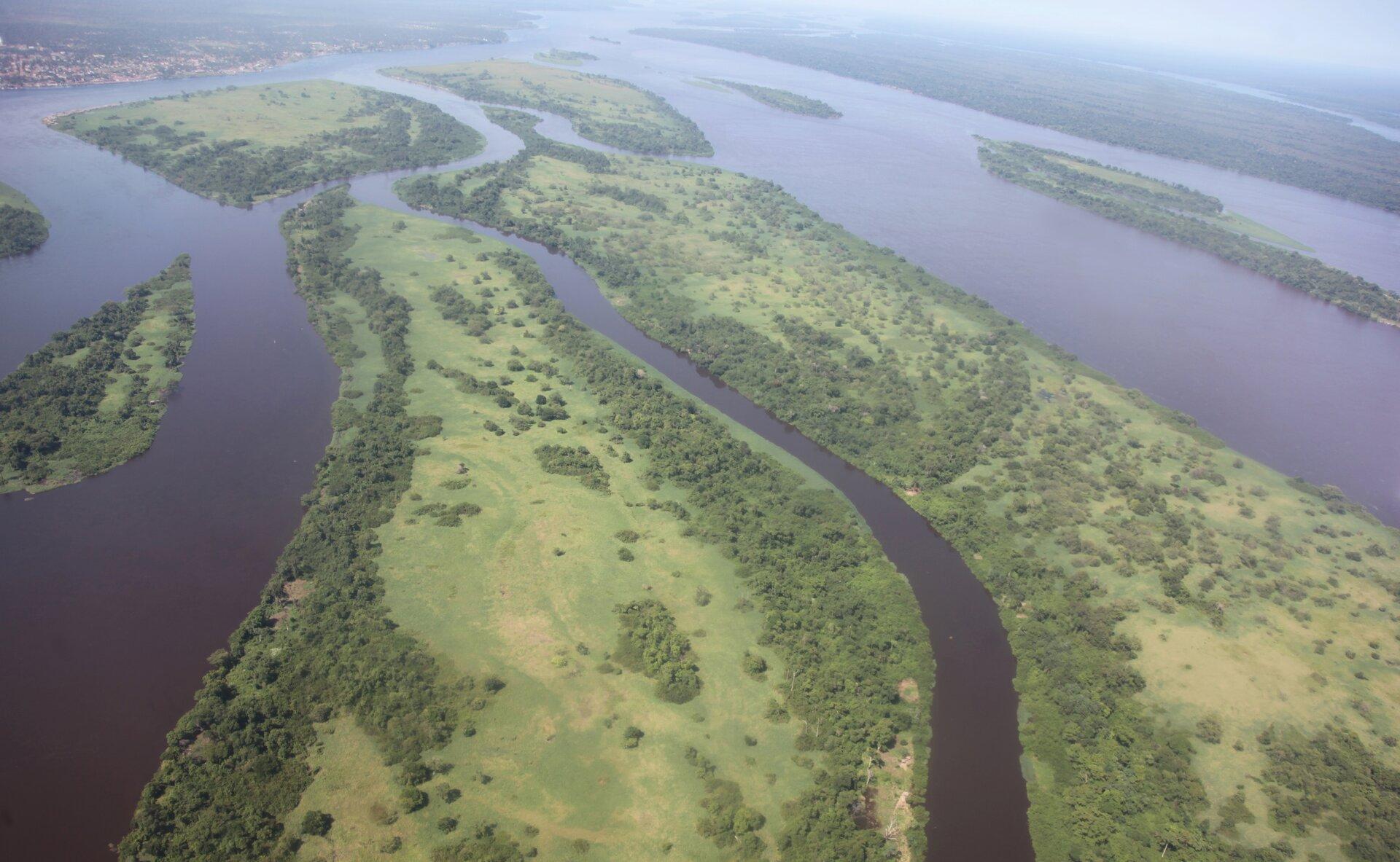Na zdjęciu rzeka wraz zdopływami wzalesionej dolinie opłaskim dnie.