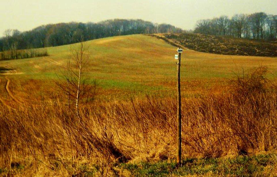 Na zdjęciu teren lekko pofałdowany. Na szczycie wzniesień las.