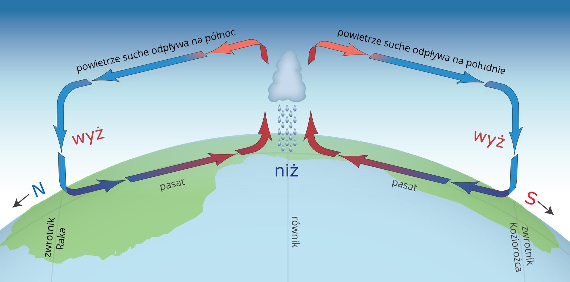 Ilustracja przedstawia fragment kuli ziemskiej od zwrotnika Raka do zwrotnika Koziorożca. Odwrócono go tak, że przez środek fragmentu kuli ziemskiej zgóry na dół przechodzi równik. Na równiku opisano niż. Nad równikiem chmura ikrople deszczu. Na lewo iprawo od chmury wiejące wiatry. Kierunek wiatrów wskazują niebieskie iczerwone strzałki. Nad równikiem na wysokości chmury, strzałki rozchodzą się poziomo na lewo ina prawo. To antypasaty. Strzałki skręcają wstronę powierzchni Ziemi na wysokości zwrotników gdzie opisano wyż. Przy powierzchni Ziemi, strzałki poziomo skierowane wstronę równika. Opisano je jako pasaty. Strzałki wskazują stałą cyrkulację wiatru od równika iponownie wkierunku równika.
