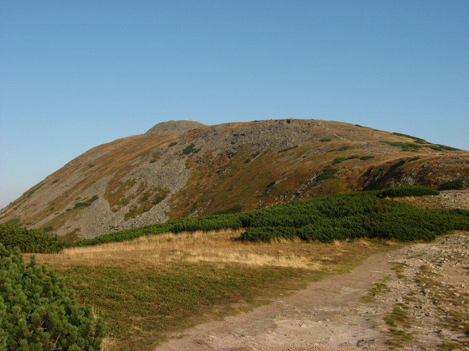 Na zdjęciu płaski szczyt porośnięty skąpą niską roślinnością. Wdole kosodrzewina.