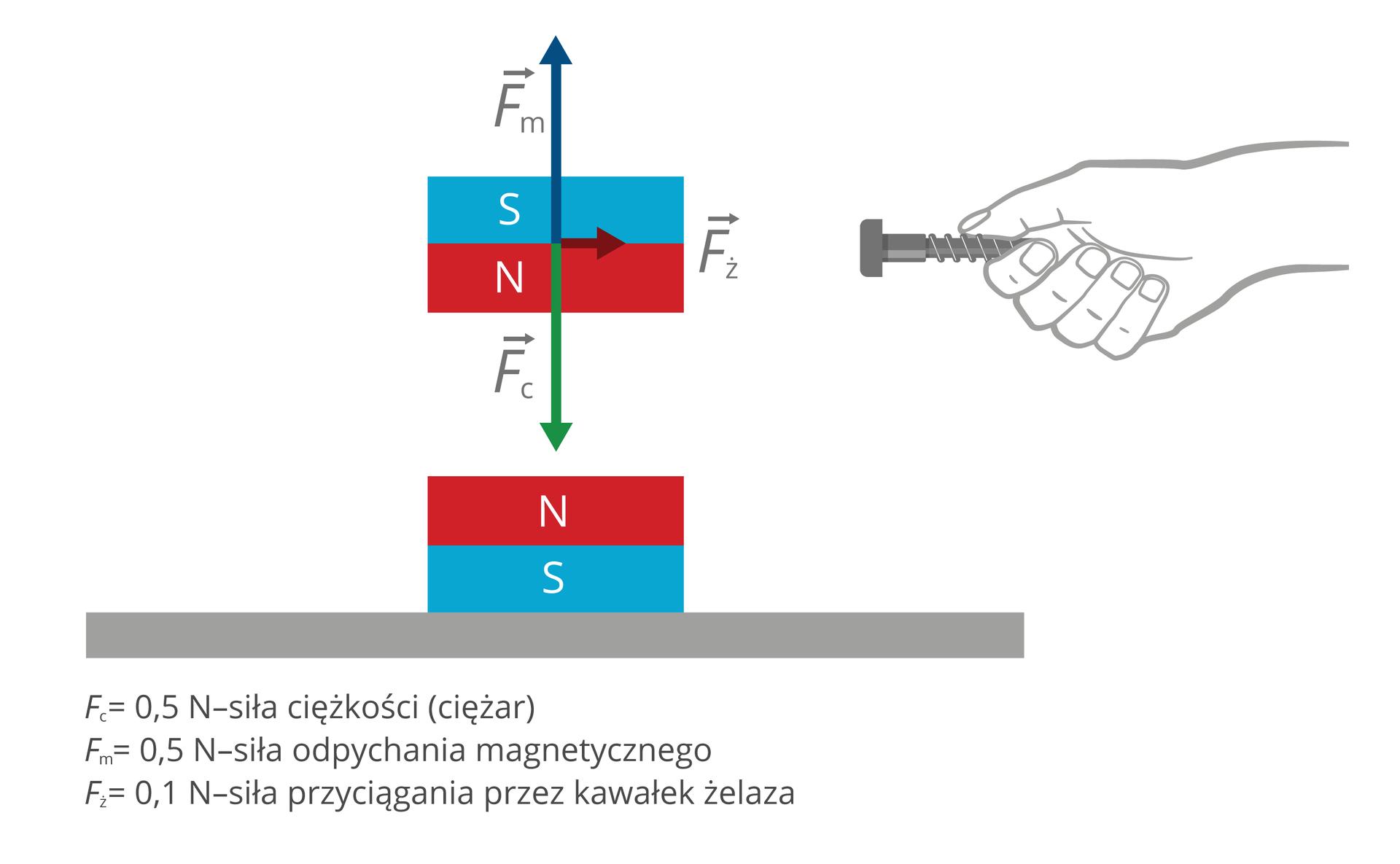 Schemat przedstawia siłę równoważącą. Widoczne są dwa magnesy oraz ręka trzymająca śrubę. Magnesy znajdują się jeden nad drugim. Nie stykają się. Zwrócone są do siebie tymi samymi biegunami (północnymi). Zprawej strony, na wysokości górnego magnesu narysowana jest ręka, która trzyma żelazną śrubę. Na schemacie oznaczono, jakie siły działają na góry magnes. Wektory trzech sił mają wspólny punkt przyłożenia. Punkt przyłożenia znajduje się na środku górnego magnesu. Dwie zsił leżą na tej samej prostej, prostopadłej do podłoża. Wektory mają ten sam kierunek, ale przeciwne zwroty. Wektor siły ciężkości (ciężaru), zwrócony jest ku dołowi. Siła ciężkości ma wartość 0,5 niutona. Wektor siły odpychania magnetycznego zwrócony jest ku górze. Siła odpychania magnetycznego również ma wartość 0,5 niutonów. Trzeci wektor to wektor siły przyciągania przez kawałek żelaza. Skierowany jest równolegle do podłoża. Zwrócony jest ku śrubie. Siła przyciągania ma wartość 0,1 niutona.
