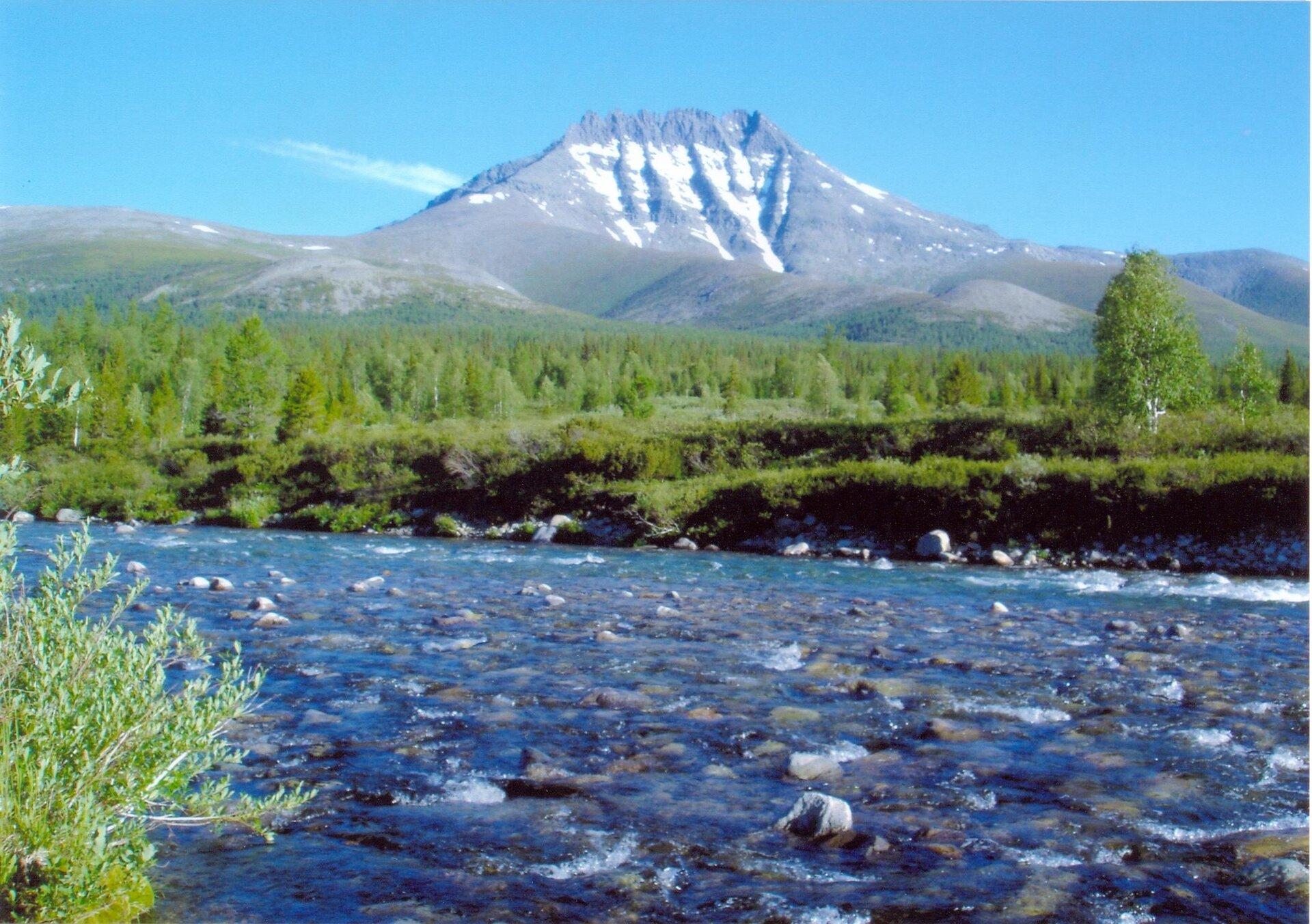 Na zdjęciu szczyt górski pozbawiony roślinności, stoki ośnieżone. Wdole las, na pierwszym planie płytka rzeka, kamieniste dno.