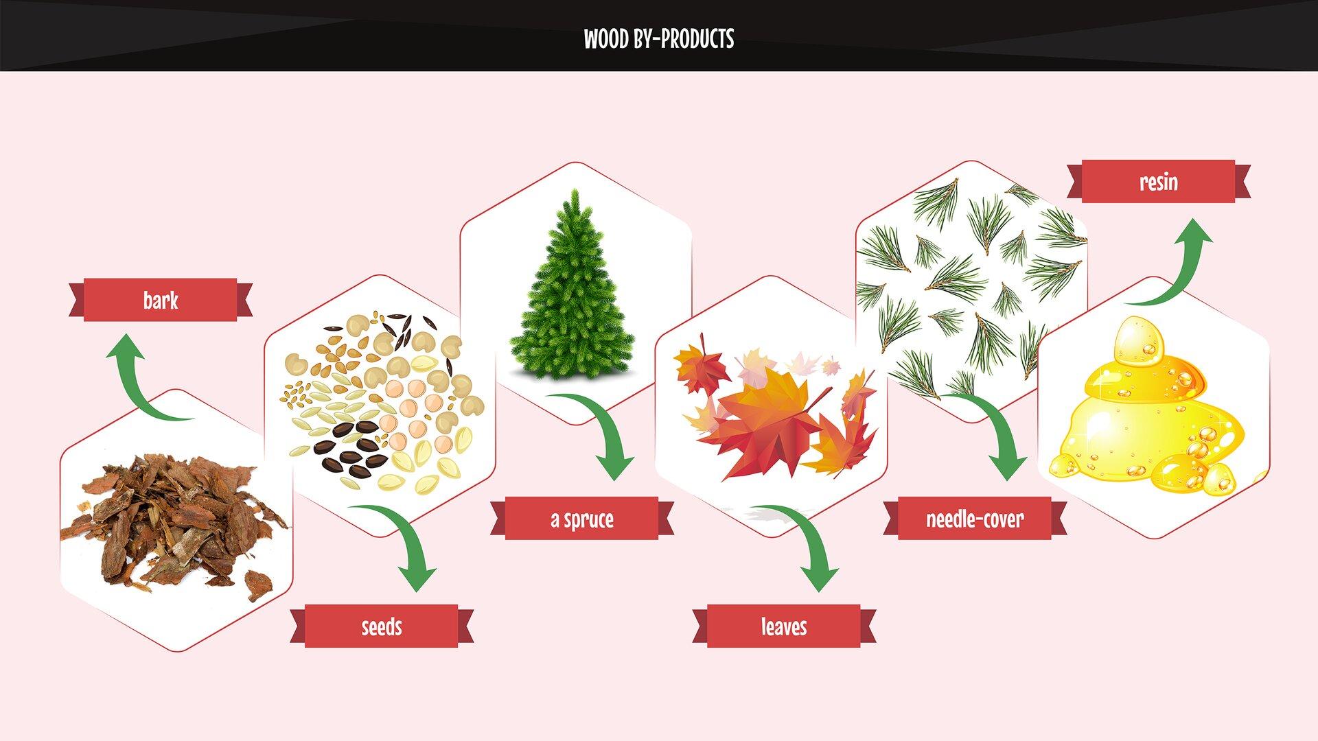 The photo presents wood by-products. Grafika przedstawia użytki uboczne pochodzenia drzewnego.