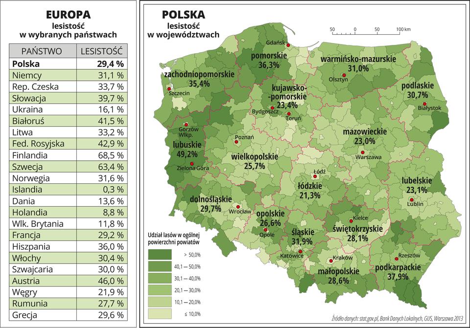 Ilustracja przedstawia mapę Polski zpodziałem na województwa ipowiaty. Na mapie przedstawiono lesistość wwojewództwach. Granice województw zaznaczone są czerwoną linią. Granice powiatów zaznaczone są czarną linią. Powierzchnie powiatów mają kolor zielony, użyto sześciu odcieni. Nasyceniem kolorów oznaczono udział lasów wogólnej powierzchni powiatów. Poszczególne kolory rozkładają się nierównomiernie iwystępują na mapie wzbliżonych ilościach. Najciemniejszy kolor jest wwojewództwach zachodnich ina południowym-wschodzie Polski. Na mapie opisano nazwy województw iopisano procentowy udział lasów wposzczególnych województwach. Największa lesistość jest wwojewództwie lubuskim – prawie pięćdziesiąt procent, najmniejsza – wwojewództwie łódzkim – nieco ponad dwadzieścia procent. Czerwonymi kropkami zaznaczono miasta wojewódzkie. Po lewej stronie mapy na dole wlegendzie umieszczono wpionie sześć prostokątów iopisano procentowy udział lasów wogólnej powierzchni powiatów od dziesięciu procent – kolor najjaśniejszy do pięćdziesięciu procent – kolor najciemniejszy. Po lewej stronie mapy umieszczono tabelę, wktórej przedstawiono lesistość wwybranych państwach Europy: największa lesistość – Finlandia – ponad sześćdziesiąt osiem procent, najmniejsza lesistość – Islandia – trzy dziesiąte procenta, lesistość wPolsce – dwadzieścia dziewięć icztery dziesiąte procenta.