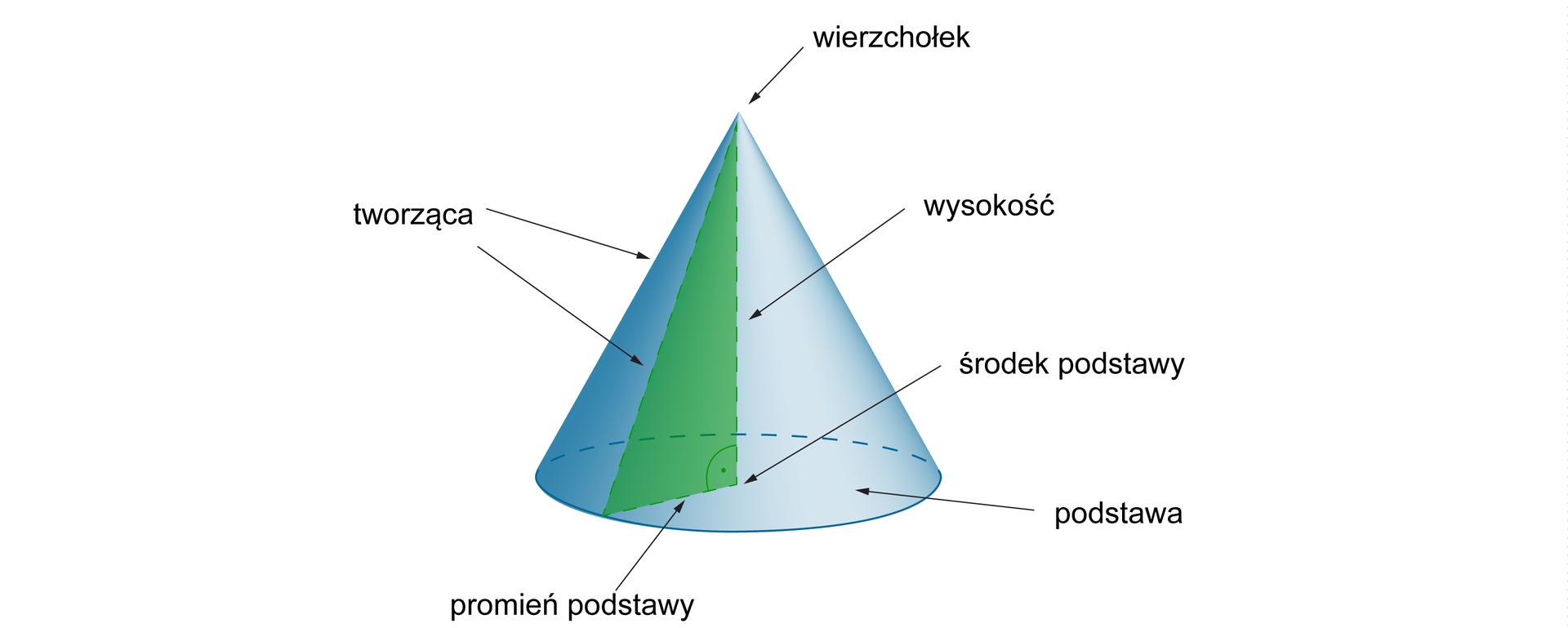 Rysunek stożka zzaznaczonym wierzchołkiem, wysokością, środkiem podstawy, podstawą, promieniem podstawy, tworzącą stożka.