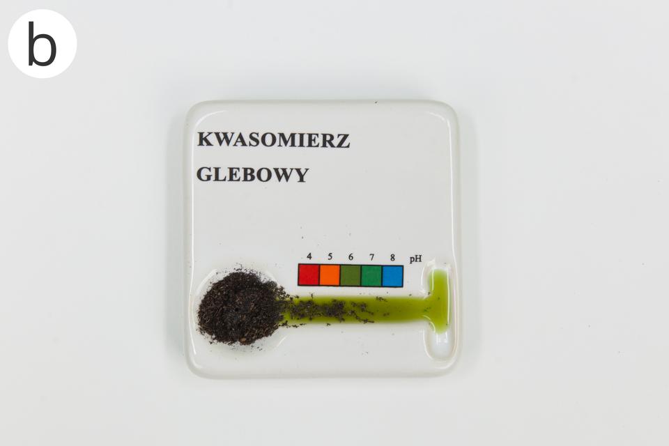 Dwa zdjęcia. Pierwsze to fotografia przedstawiająca wyniki badania dwóch różnych próbek (gleba kwaśna - pH 6 igleba zasadowa - pH 8 ).Druga fotografia przedstawia badanie odczynu gleby zużyciem zestawu kwasowmierza zpłynem Helliga.