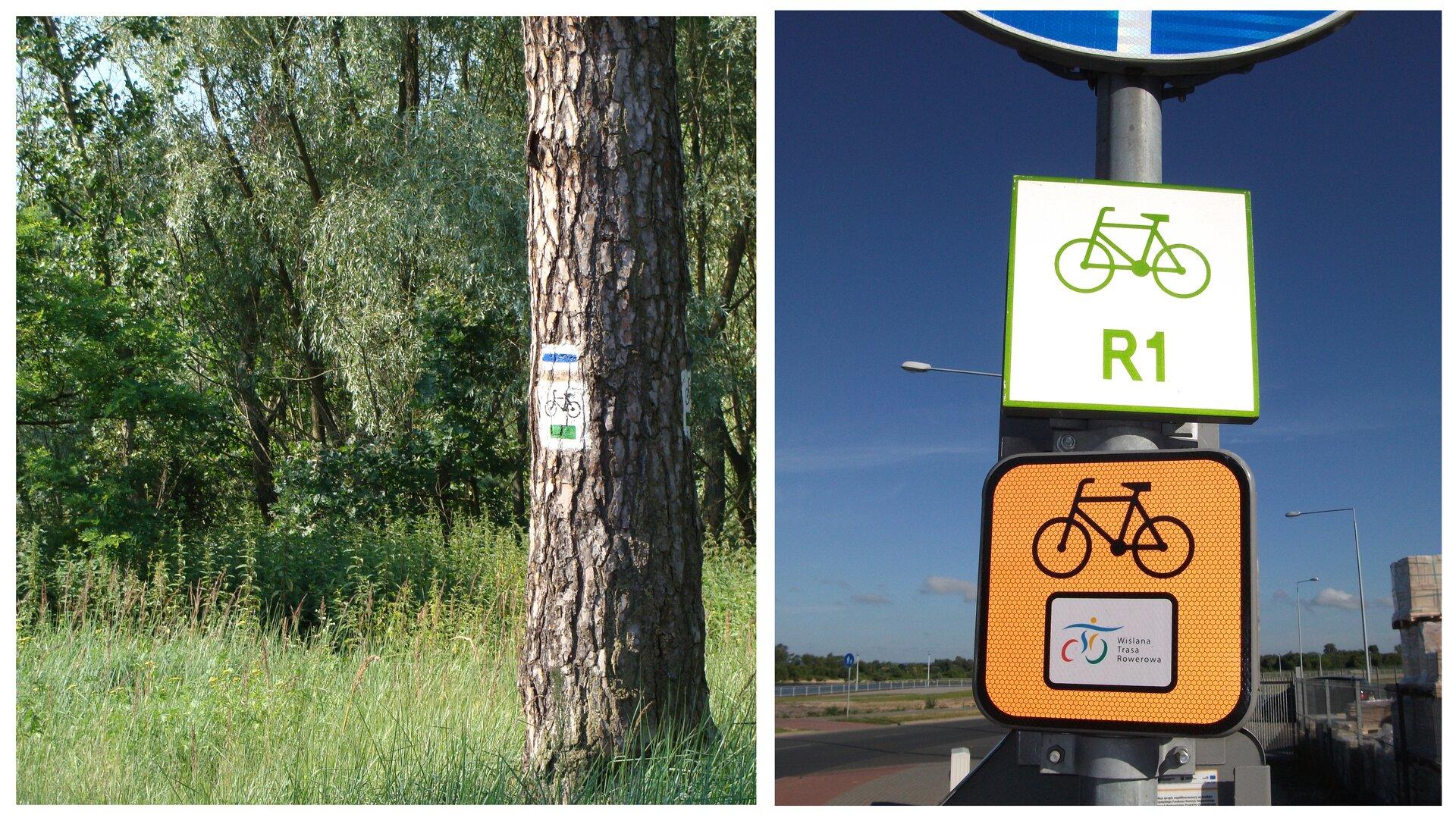 Fotografia zlewej przedstawia pień drzewa na tle lasu. Na pniu znajduje się biało – niebieski symbol szlaku turystycznego. Pod nim wbiałym kwadracie symbol roweru izielony pasek. To oznakowanie trasy. Fotografia zprawej przedstawia dwie tabliczki zoznaczeniem tras rowerowych. Znajdują się na metalowym słupie znaku drogowego przy szosie. Górna, biała ma zielony symbol roweru inapis R1, czyli oznaczenie szlaku europejskiego. Dolna, pomarańczowa ma czarny symbol roweru ikolorowy znaczek na białym tle. To oznakowanie trasy regionalnej.