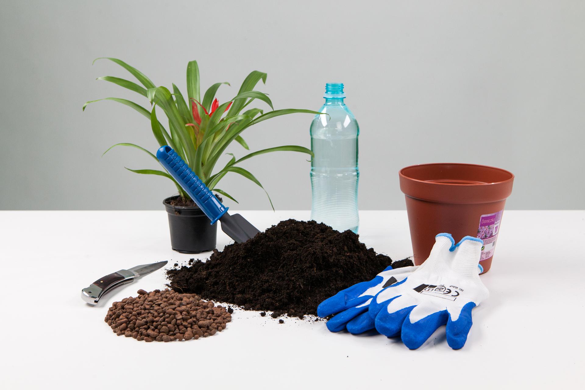 Pokaz slajdów prezentujących przesadzanie rośliny doniczkowej. Slajd 1 – prezentuje przybory potrzebne do przesadzania rośliny: żwir, ziemia, łopatka, nóż, rękawice, nowa doniczka, woda wbutelce.