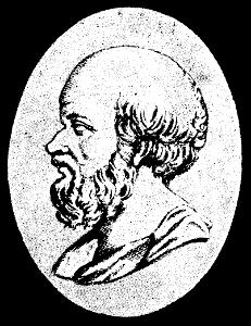 Ilustracja przedstawia portret Eratostenesa. Przeważają odcienie szarości. Widoczny jest tylko lewy profil mężczyzny wwieku około 55 lat. Łysy. Ztyłu głowy kręcone włosy zakrywają górną część szyi. Długa kręcona broda iwąsy wkolorze włosów. Nos krótki, zaokrąglony na końcu.