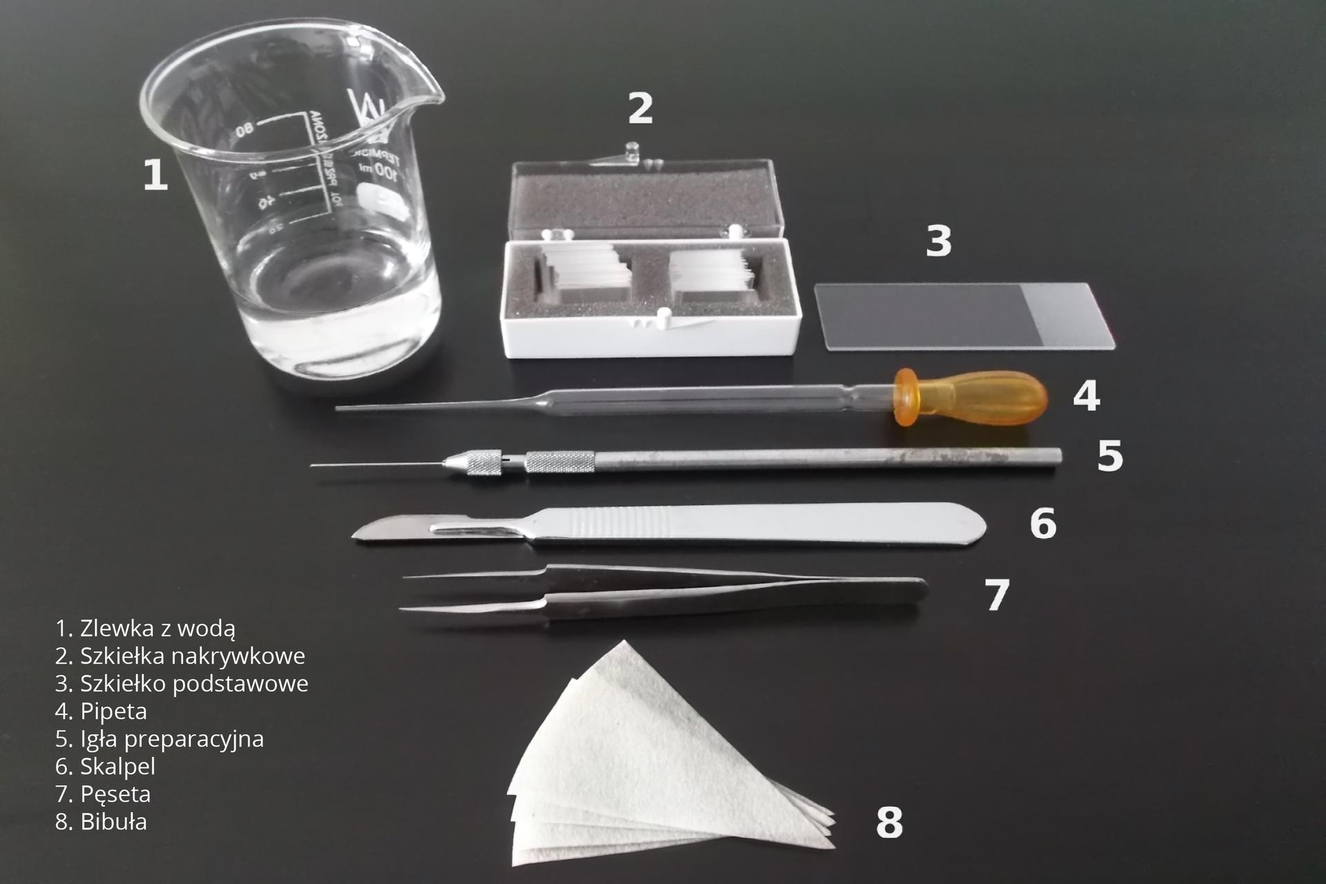 Fotografia przedstawia przedmioty, potrzebne do sporządzenia preparatu mikroskopowego. Każdy znich jest oznaczony cyfrą od 1 do 8. Ugóry stoi zlewka zwodą onumerze jeden. Po prawej znajduje się pudełeczko zkwadratowymi, cienkimi szkiełkami nakrywkowymi, ułożonymi wotworach wgąbce. Obok leży pojedyncze, prostokątne szkiełko nakrywkowe znumerem trzy. Pod nimi są ułożone kolejno: pipeta, igła preparacyjna, skalpel ipęseta. Na dole fotografii umieszczono trójkątne kawałki białej bibuły znumerem osiem