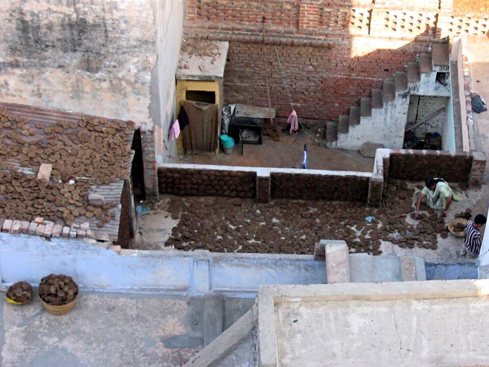 Wykorzystanie odchodów zwierzęcych jako źródła energii do przygotowywania posiłków wIndiach (Waranasi)