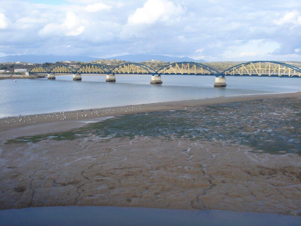 Na zdjęciu rzeka, wyschnięte brzegi, muł, strużki wody wmule. Metalowy most. Na drugim brzegu zabudowania, dalej góry.
