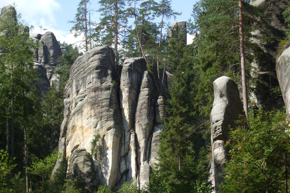 Fotografia prezentuje wysokie, opłaskich szczytach, skały Gór Stołowych, pomiędzy którymi rosną drzewa iglaste.