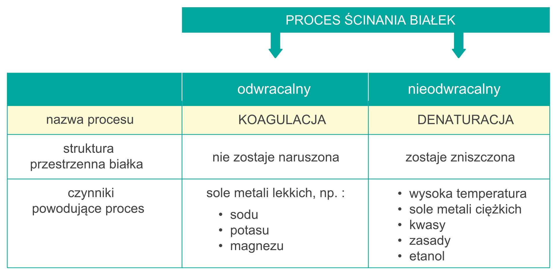 Różnice między koagulacją adenaturacją białka