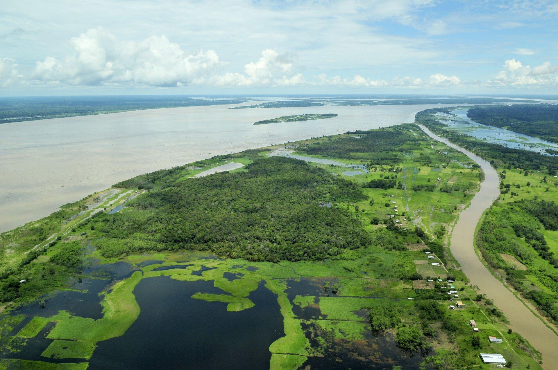 Na zdjęciu płaski, rozległy teren porośnięty częściowo lasami, rzadkie zabudowania, bardzo szeroka rzeka zwąskim dopływem.