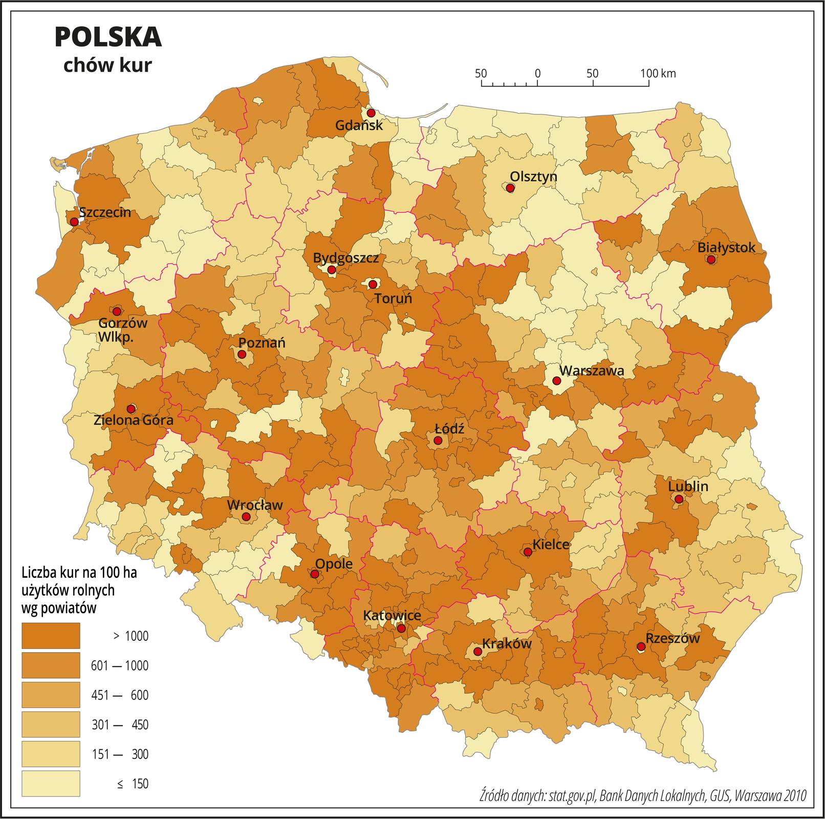 Ilustracja przedstawia mapę Polski zpodziałem na powiaty, na której za pomocą kolorów od pomarańczowego do żółtego przedstawiono liczbę sztuk kur na sto hektarów użytków rolnych wg powiatów. Na mapie czerwonymi liniami oznaczono granice województw, aczarnymi granice powiatów, czerwonymi kropkami oznaczono miasta wojewódzkie ije opisano. Najciemniejszym odcieniem koloru pomarańczowego oznaczono obszary, gdzie występuje powyżej tysiąca sztuk kur na sto hektarów użytków rolnych, anajjaśniejszym odcieniem koloru żółtego obszary, gdzie hodowla kur jest najmniejsza iwynosi poniżej stu pięćdziesięciu sztuk na sto hektarów użytków rolnych. Na mapie przeważają obszary ciemniejsze. Poszczególne kolory są rozłożone nierównomiernie. Największa liczba powiatów oznaczonych kolorem najjaśniejszym, wktórych hodowla kur jest najmniejsza występuje wwojewództwie mazowieckim, podlaskim iwarmińsko-mazurskim izachodniopomorskim. Poniżej mapy wlegendzie opisano kolory użyte na mapie.