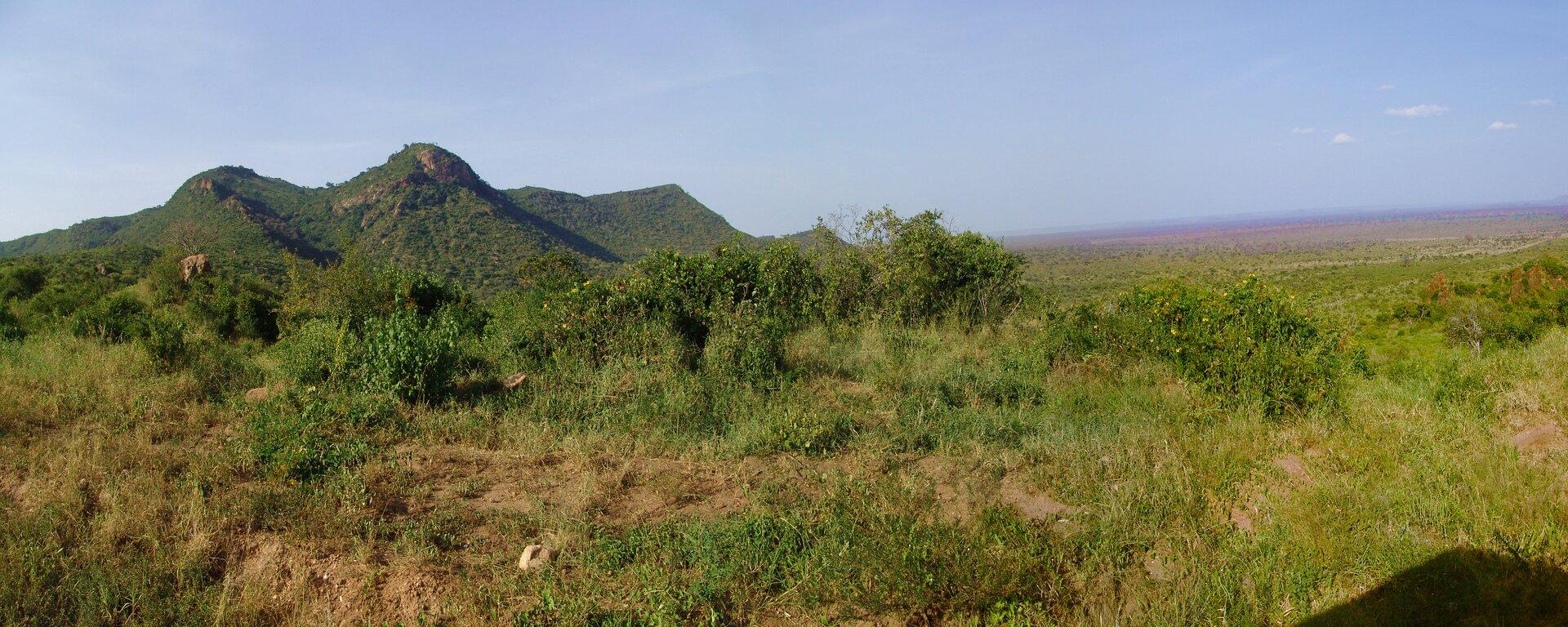Fotografia przedstawia krajobraz ryftu, czyli obniżenia terenu wKenii. Zlewej woddali znajdują się 3 szczyty górskie, przed nimi równina porośnięta wyschniętą trawą oraz częściowo niskimi krzewami.