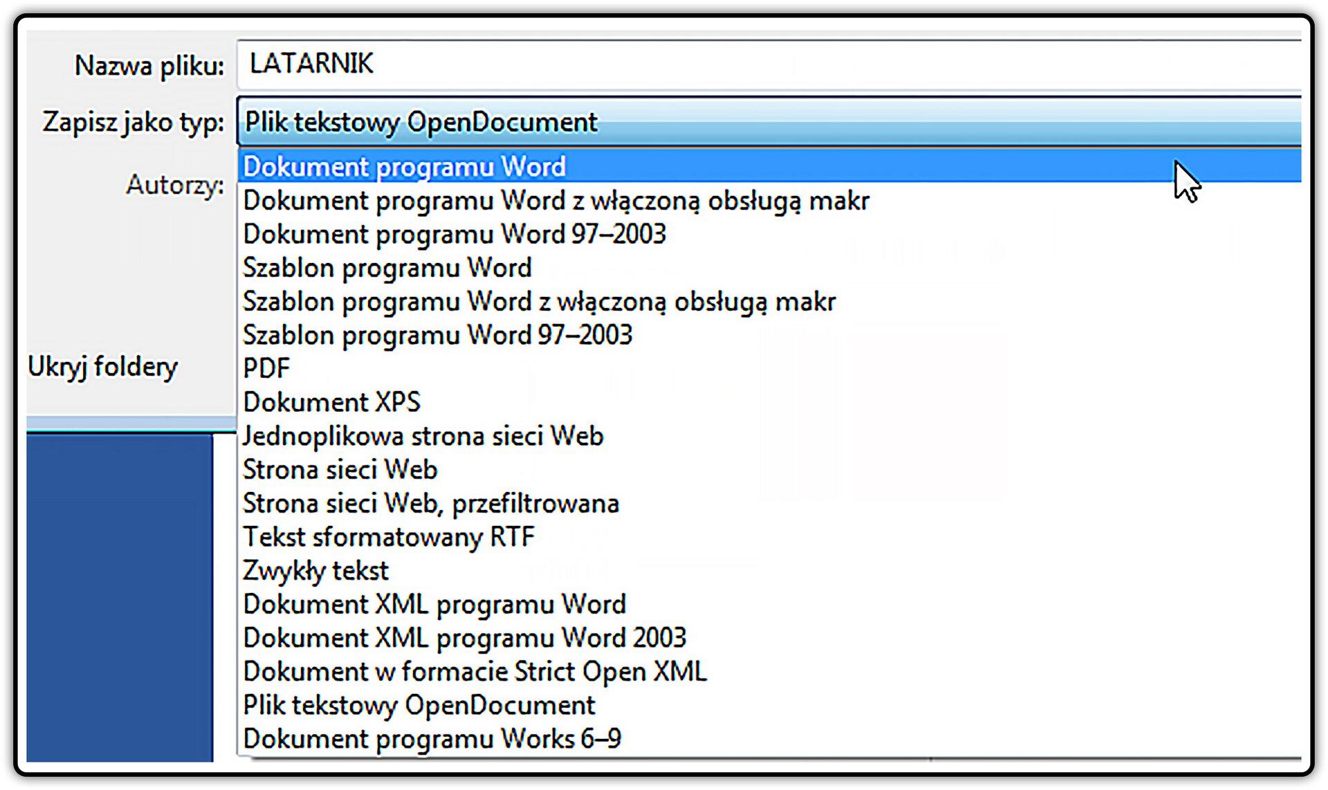 Zrzut okna zformatami zapisu dokumentu tekstowego wprogramie MS Word
