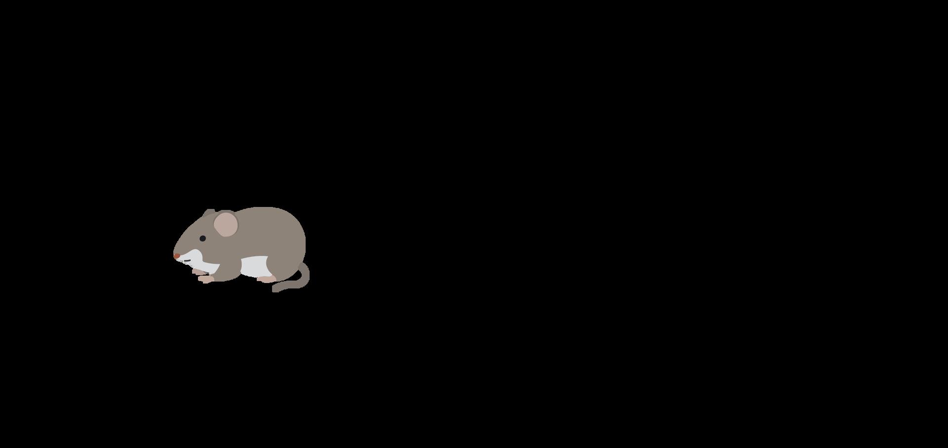 mysz ilustracja Źródło: Shutterstock, tylko do użytku edukacyjnego na epodreczniki.pl.