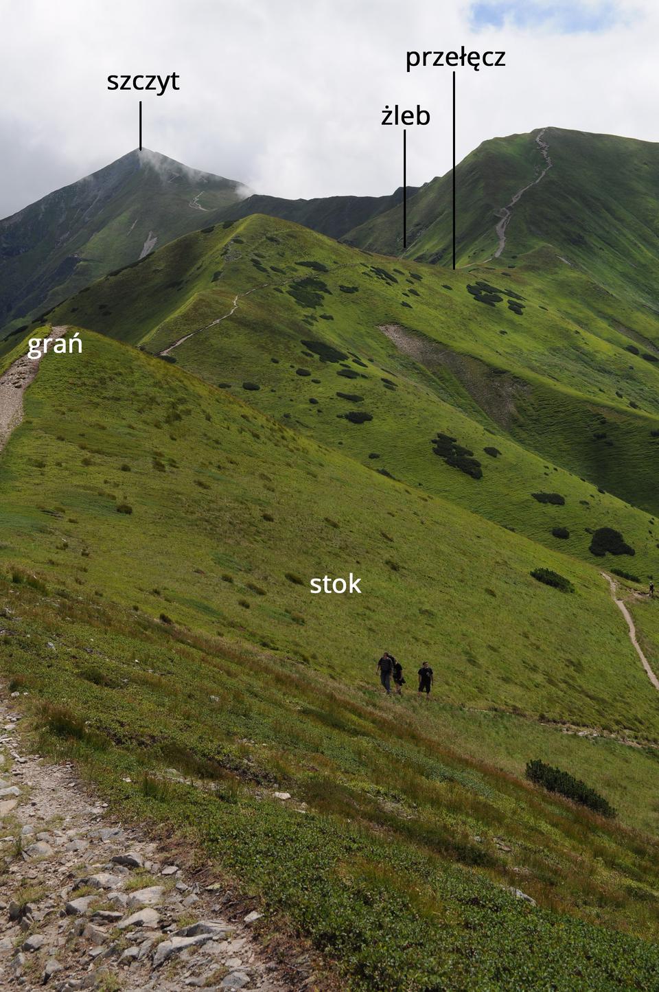 Fotografia prezentuje typowy widok wysokogórski zopisem form terenu. Strome zbocze po prawej stronie fotografii, to stok. Po lewej stronie, krawędź na szczycie stykających się zboczy, to grań. Obniżenie wprzebiegu grani, to przełęcz. Wklęsłe wcięcie wstoku po lewej stronie, to żleb. Na końcu fotografii po lewej stronie najwyższy punkt góry, to szczyt.
