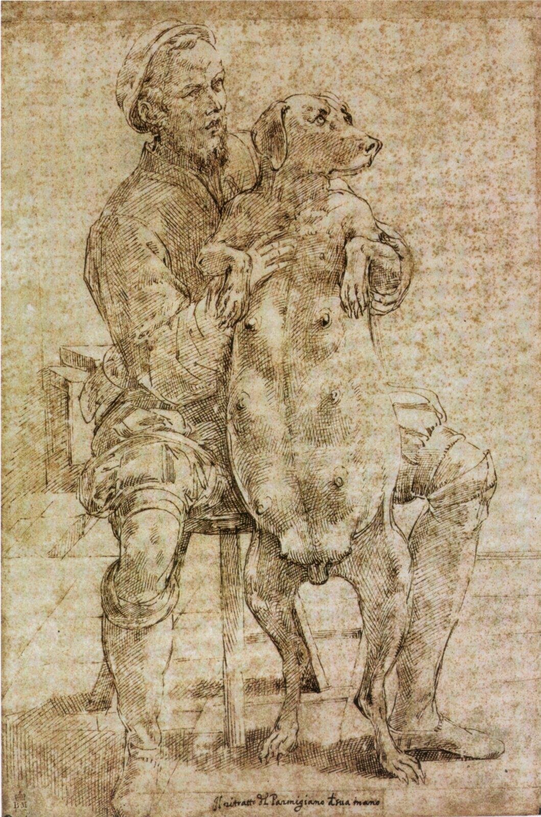Rysunek Parmigianinoprzedstawiający artystę zkarmiącą suką. Rysunek Parmigianinoprzedstawiający artystę zkarmiącą suką. Źródło: Parmigianino, ok. 1530, domena publiczna.