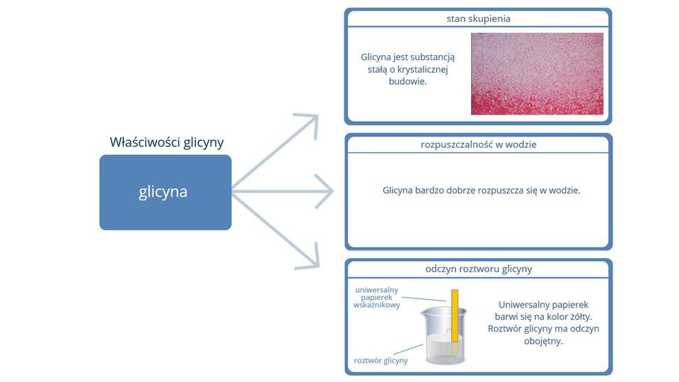 Właściwości glicyny