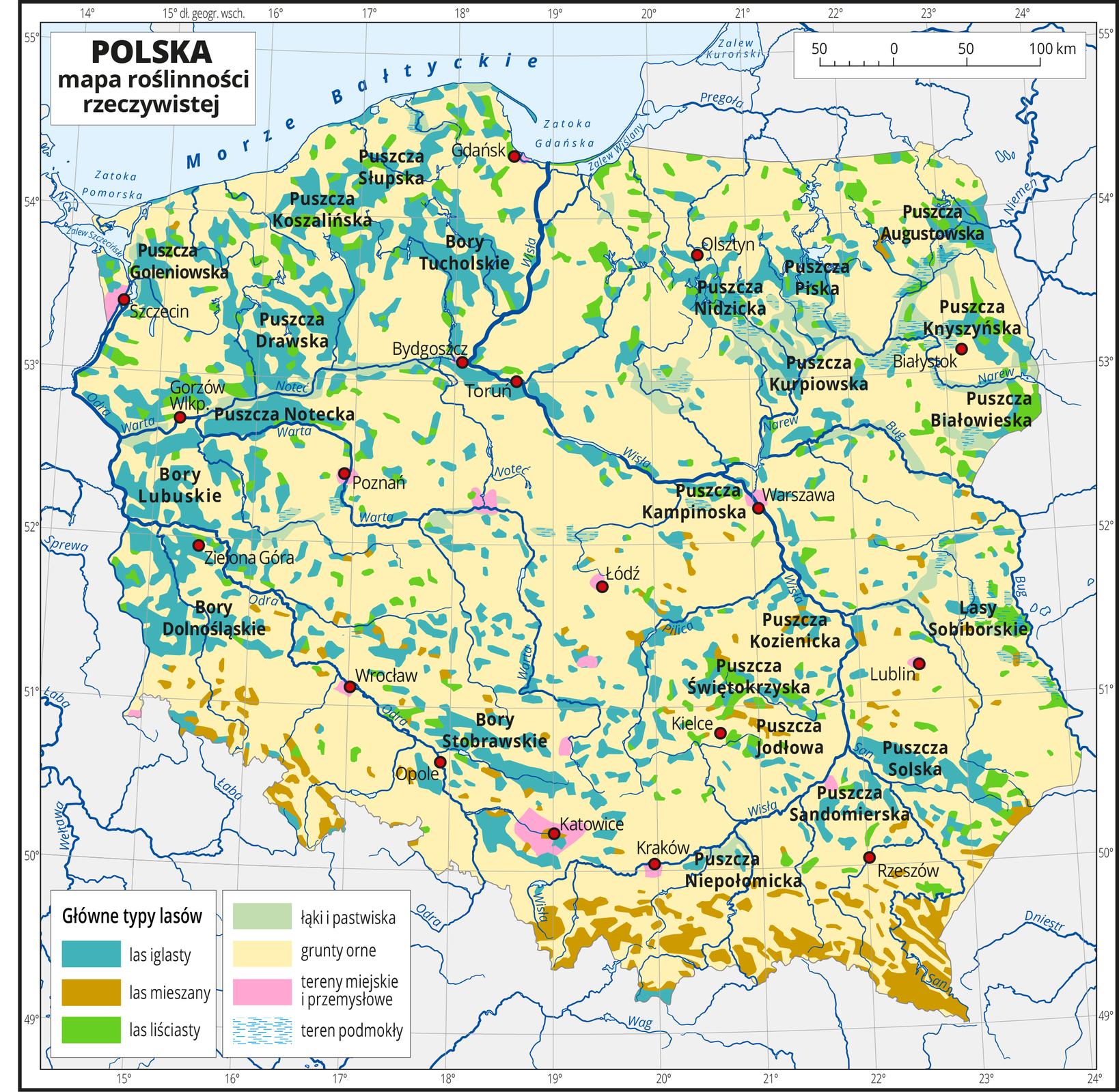 Ilustracja przedstawia mapę Polski . Na mapie kolorami zaznaczono trzy główne typy lasów, łąki ipastwiska, grunty orne, tereny miejskie iprzemysłowe oraz tereny podmokłe. Większą część Polski zajmują grunty orne oznaczone kolorem żółtym. Wdolinach rzek ina pojezierzach występują lasy iglaste, gdzieniegdzie lasy liściaste. Na terenach górskich występują lasy mieszane. Wrejonie dużych miast oznaczono tereny miejskie iprzemysłowe. Najwięcej łąk ipastwisk występuje wpółnocno-wschodniej części Polski. Czerwonymi kropkami zaznaczono miasta wojewódzkie. Opisano główne rzeki imorze. Mapa pokryta jest siatką równoleżników ipołudników. Dookoła mapy jest biała ramka, wktórej opisane są współrzędne geograficzne co jeden stopień. Po lewej stronie mapy wlegendzie umieszczono siedem kolorowych prostokątów, które opisano. Wydzielono trzy rodzaje lasów: iglasty, mieszany iliściasty oraz łąki ipastwiska, grunty orne, tereny miejskie iprzemysłowe oraz tereny podmokłe.
