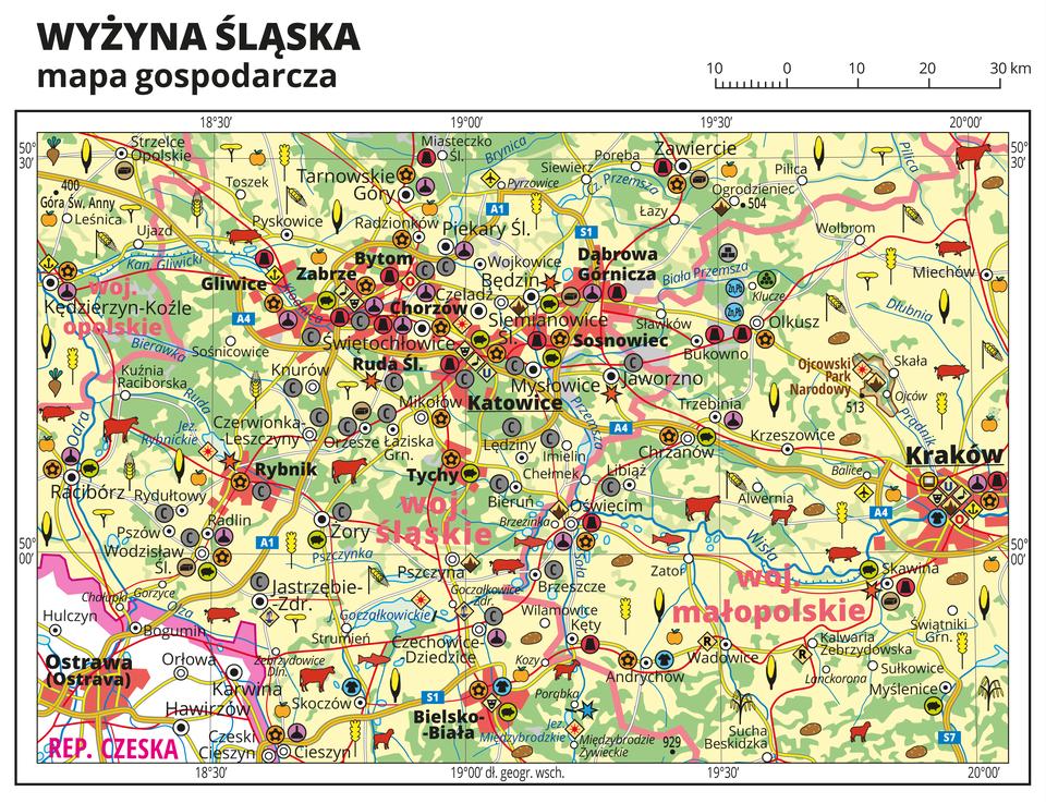Ilustracja przedstawia mapę gospodarczą Wyżyny Śląskiej. Tło mapy wkolorze żółtym (grunty orne), jasnozielonym (łąki ipastwiska) izielonym (lasy). Mapa obejmuje rejon Górnego Śląska od Kędzierzyna Koźla na zachodzie po Kraków na wschodzie, na północy sięgając Zawiercia, na południu Bielska-Białej. Na mapie sygnatury obrazujące uprawy poszczególnych roślin, hodowlę zwierząt, przemysł, górnictwo ienergetykę, komunikację, turystykę, naukę, kulturę isztukę. Największe zagęszczenie sygnatur waglomeracji Górnego Śląska iwKrakowie. Duże zagęszczenie sygnatur wBielsku-Białej iZawiercia. Na obszarze całej mapy rozmieszczone sygnatury hodowli iupraw. Na mapie przedstawiono sieć dróg ikolei, porty wodne ilotnicze, granice województw, granicę państwa. Opisano województwa opolskie, śląskie, małopolskie, Republikę Czeską. Mapa zawiera południki irównoleżniki, dookoła mapy wbiałej ramce opisano współrzędne geograficzne co trzydzieści minut.