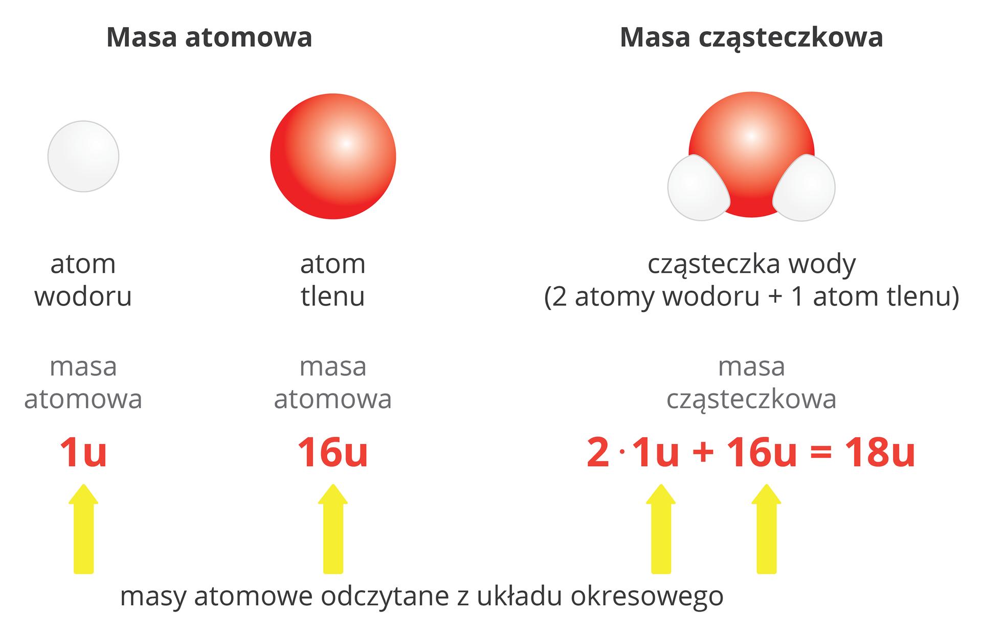 Obliczanie mas cząsteczkowych - Epodreczniki.pl