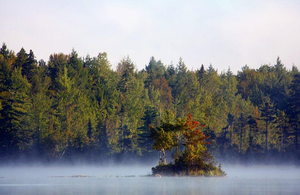 Mglisty poranek nad rzeką
