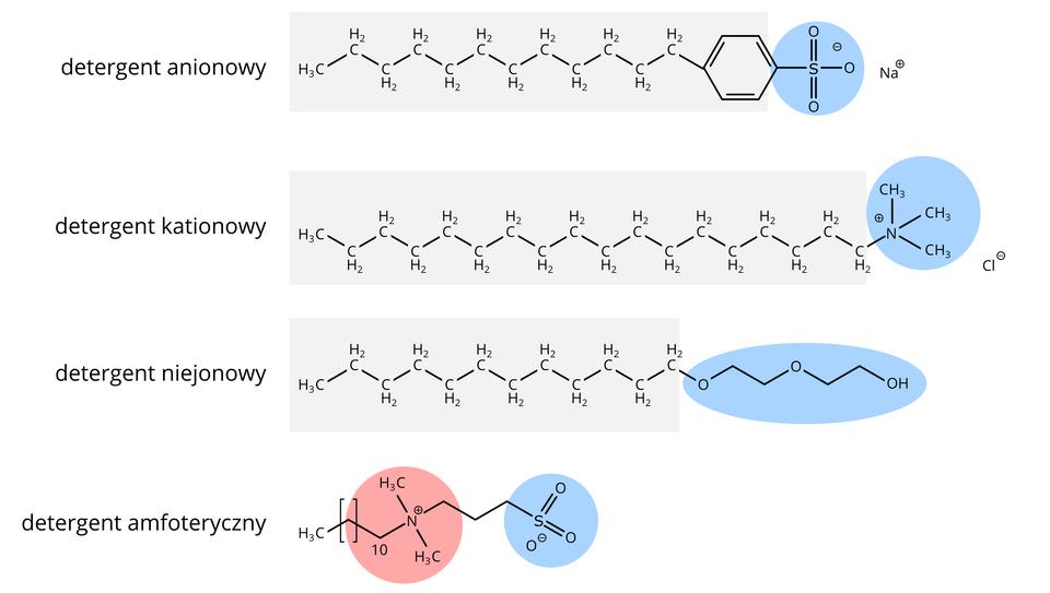 """Ze względu na charakter chemiczny grupy polarnej rozróżnia się detergenty anionowe – grupa hydrofilowa ma ładunek ujemny, detergenty kationowe – zdodatnio naładowaną hyrofilową """"głową"""", detergenty niejonowe (fragment hydrofilowy zawiera grupy polarne) oraz amfoteryczne (ładunek hydrofilowej głowy zmienia się wzależności od pH)"""