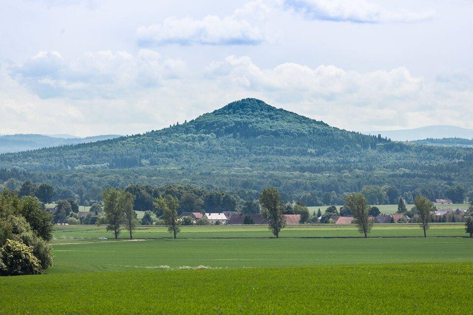 Zalesione wzgórze wulkanu Ostrzyca.