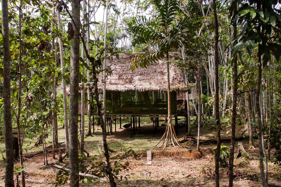 Galeria fotografii prezentuje przykłady budowli stworzonych przez człowieka wróżnym krajobrazie. Fotografia prezentuje dom prostej konstrukcji, umieszczony na palach ipokryty liśćmi. Dom typowy dla mieszkańców lasów Amazonii.