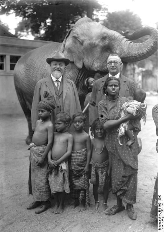 Wberlińskim zoo Źródło: Wberlińskim zoo, 1931, German Federal Archives, licencja: CC BY-SA 3.0.