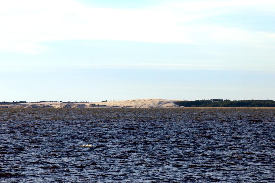 Fotografia przedstawia przybrzeżne jezioro Łebsko, powstałe na skutek odcięcia zatoki przez osady naniesione prądem morskim
