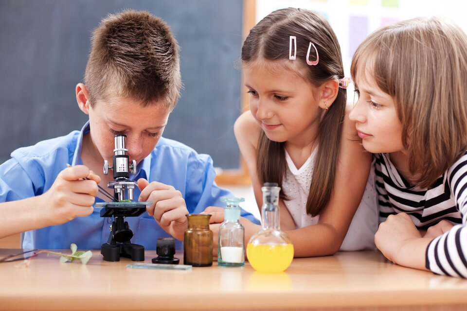 Fotografia przedstawia trójkę dzieci siedzących przy biurku, na którym ustawiony jest mikroskop optyczny, aobok niego zjednej strony cztery naczynia laboratoryjne, azdrugiej - gałązka zzielonymi liśćmi. Po lewej stronie siedzi chłopiec, który posługuje się mikroskopem: obserwuje przez okular preparat umieszczony wmikroskopie. Jest nim zielony liść. Dwie dziewczynki obserwują pracę kolegi.