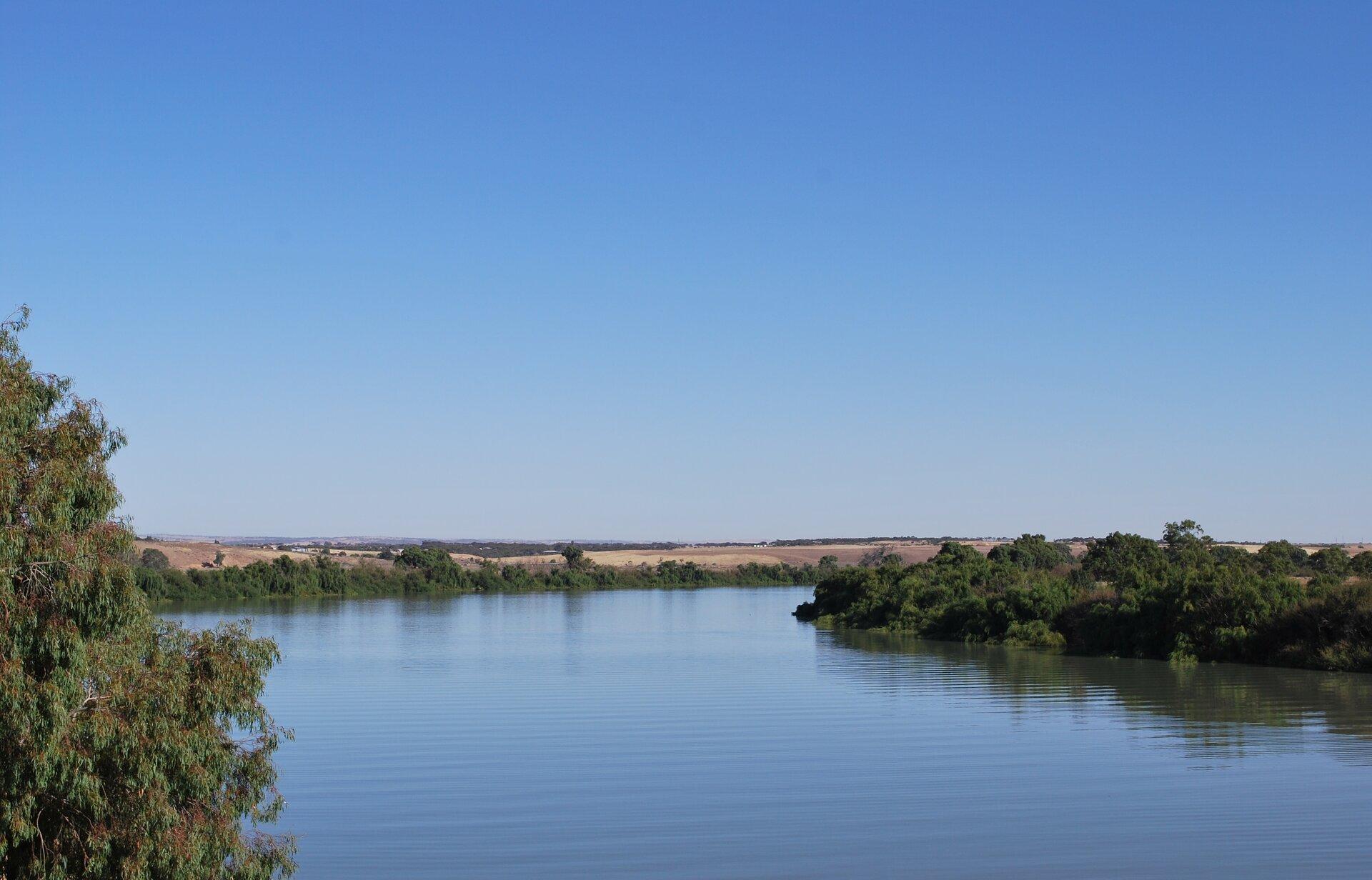 Na ilustracji szeroka rzeka, brzegi porośnięte drzewami. Wtle rozległa równina.