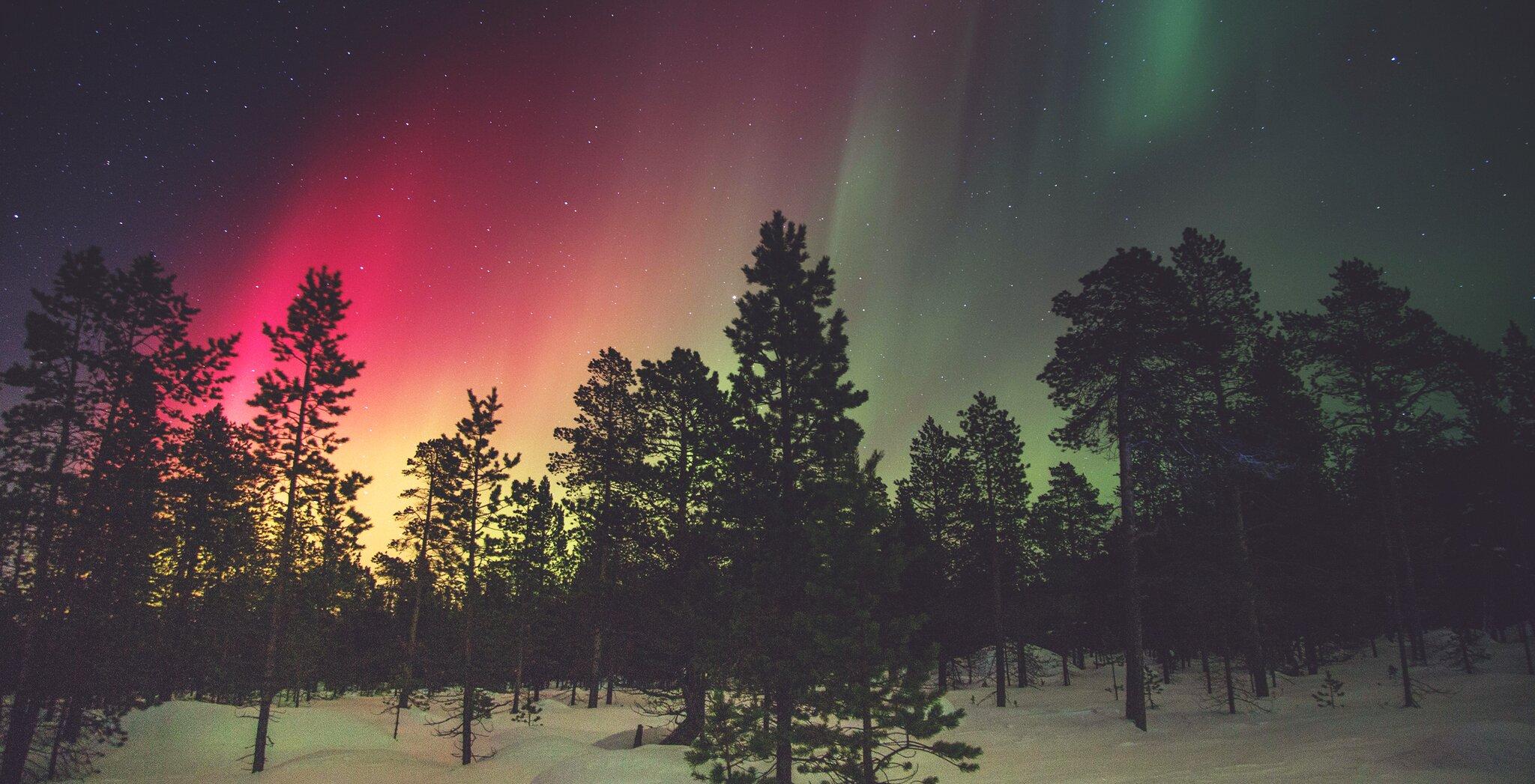 Zorza polarna – najpiękniejsza urodzinowa dekoracja Zorza polarna – najpiękniejsza urodzinowa dekoracja Źródło: licencja: CC 0.