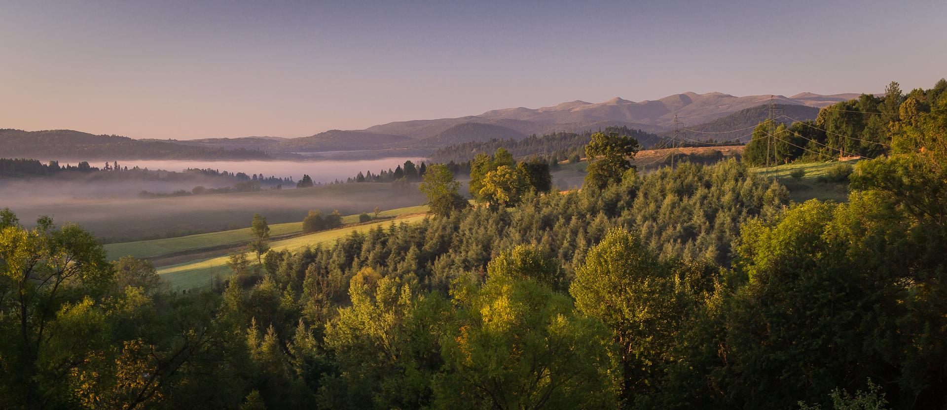Fotografia przedstawia krajobraz Bieszczad. Zprawej las, niżej pasma mgły izbiornik wodny. Wgłębi górskie szczyty.