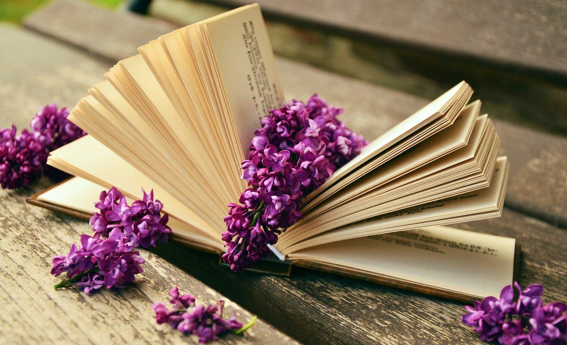 Poezja1 Źródło: www.pixabay.com, fotografia barwna, domena publiczna.