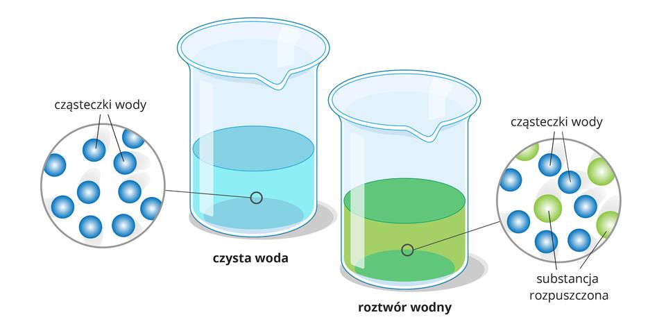 Na ilustracji zaprezentowano dwie szklane zlewki. Jedna jest wypełniona wodą, adruga roztworem wodnym wkolorze zielonym. Wkółkach obok zlewek zaprezentowano modele drobinowe cząsteczek każdej ztych substancji.