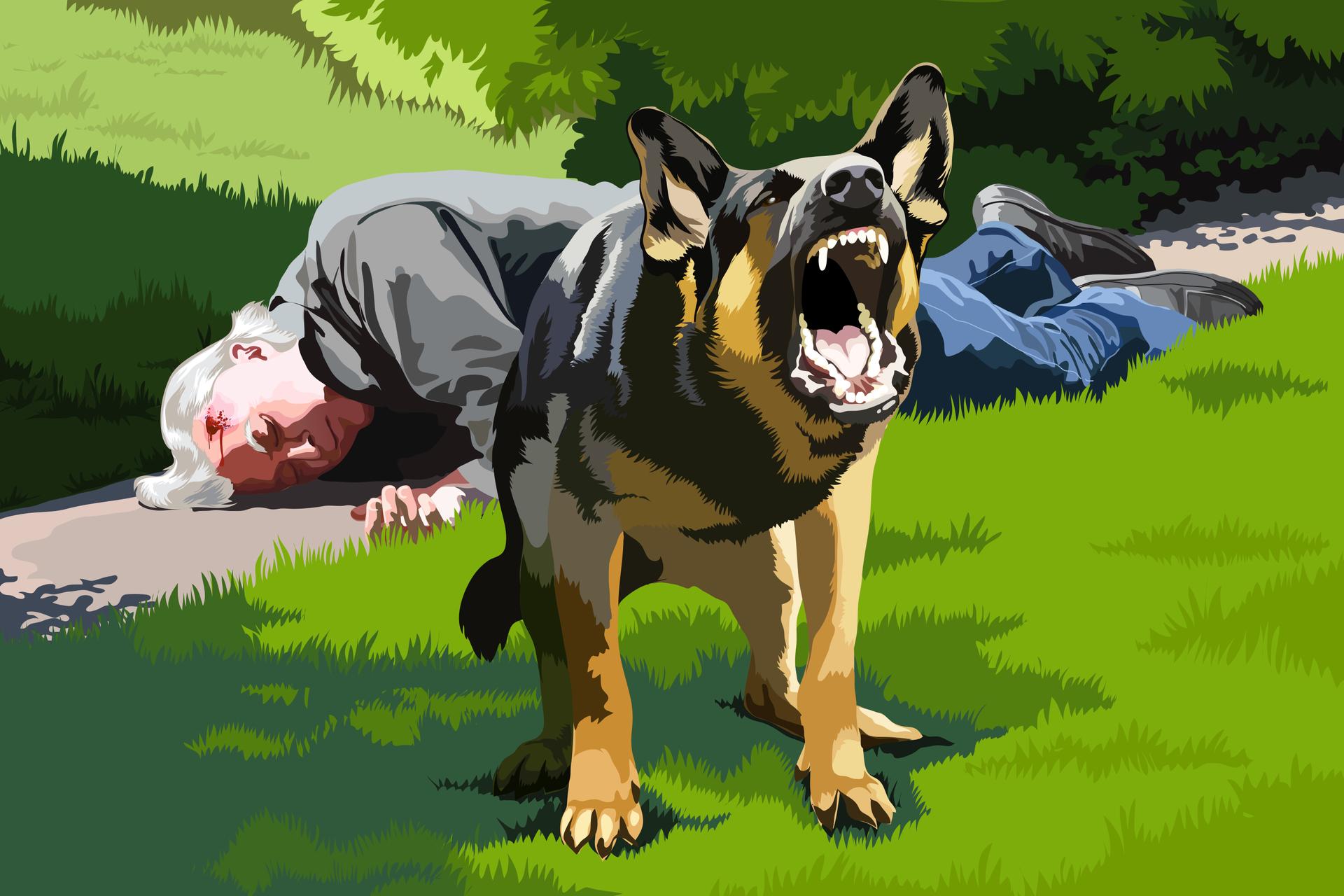 Rysunek przedstawiający leżącego na chodniku poszkodowanego starszego człowieka zurazem głowy iwidocznymi śladami krwi. Przed poszkodowanym na trawie stoi szczekający pies przejawiający wyraźną agresję, który nie pozwala podejść ratownikowi do poszkodowanego.