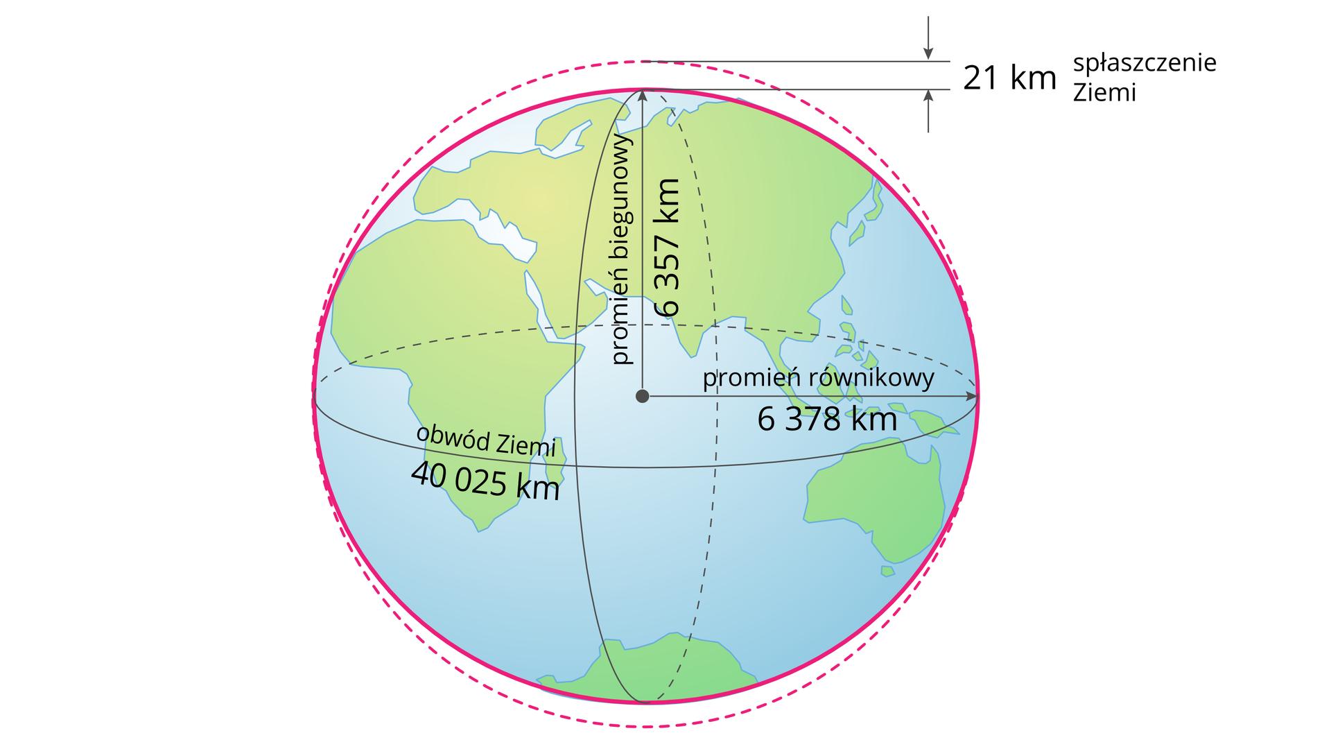 Ilustracja przedstawia kulę ziemską. Na jej powierzchni zaznaczone zostały kontynenty. Kula podzielona jest na dwie równe połowy. Pozioma strzałka wskazuje promień Ziemi od środka do równika. Strzałka ma grot, który dotyka równika. Promień równikowy wynosi sześć tysięcy trzysta siedemdziesiąt osiem kilometrów. Pionowa strzałka wskazuje promień od środka Ziemi do bieguna, opisany jako promień biegunowy, który wynosi sześć tysięcy trzysta pięćdziesiąt siedem kilometrów. Szara linia wokół Ziemi to równik ijednocześnie obwód Ziemi. Obwód Ziemi to czterdzieści tysięcy dwadzieścia pięć kilometrów. Wokół Ziemi linią przerywaną narysowano okrąg, zktórym Ziemia styka się tylko wmiejscach, gdzie przebiega równik. Przy biegunach Ziemia odstaje od okręgu do wewnątrz, jest spłaszczona. Dlatego jej kształt przypomina elipsoidę. Na górze ilustracji znajdują się dwie poziome linie. Dolna styka się zkonturem Ziemi wmiejscu bieguna północnego. Górna, równoległa, oparta jest na okręgu. Odległość między północnym biegunem Ziemi iokręgiem to dwadzieścia jeden kilometrów. Otaką wielkość Ziemia jest spłaszczona na biegunach.