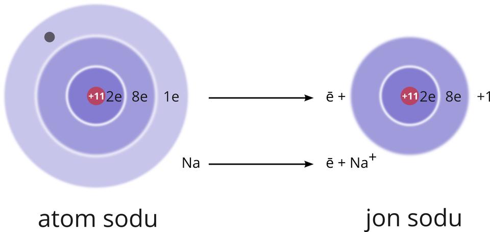 """Ilustracja przedstawia proces tworzenia dodatniego jonu sodu. Na zdjęciu umiejscowione są dwa niebieskie koła. Każde koło podzielone jest na wąskie kręgi. Każdy krąg wewnątrz to powłoka. Po lewej stronie pierwszy krąg to atom sodu. Atom sodu podzielony jest na trzy orbitale. Pierwsza powłoka, wcentrum koła, mieści dwa elektrony. Oznaczona jest literą """"ka"""". Druga powłoka elektronowa, wokół pierwszej powłoki, to """"el"""". Powłoka """"el"""" mieści maksymalnie osiem elektronów. Powłoka otaczająca całe koło to powłoka """"em"""". Czerwony punkt na powłoce to jest jeden elektron. Po prawej stronie znajduje się mniejsze koło. Jest to jon sodu. Koło podzielone na dwie powłoki. Powłoka najbliżej centrum to powłoka """"ka"""". Na powłoce symbol liczby dwa ilitera """"e"""". Powłoka mieści maksymalnie dwa elektrony. Zewnętrzna, druga powłoka, to """"el"""". Na powłoce symbol liczby osiem ilitera 'e'. To maksymalna liczba elektronów. Powyżej jonu sodu znajduje się symbol """"plus"""" przed liczbą jeden."""