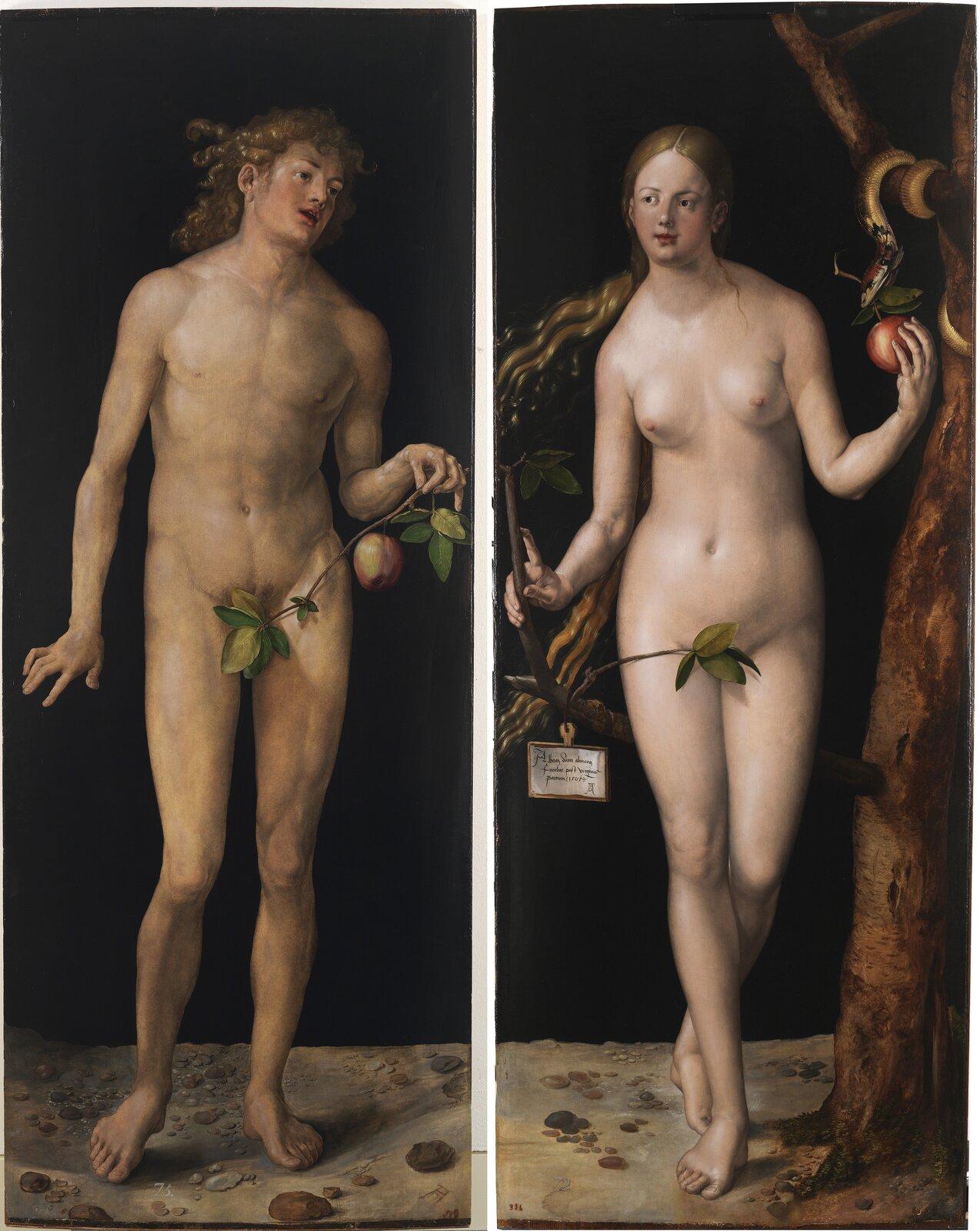 """Ilustracja przedstawia obraz """"Adam iEwa"""" autorstwa Albrechta Dürera. Dzieło składa się zdwóch części na których ukazane są nagie postacie Adama iEwy. Wlewej części dyptyku znajduje się młody mężczyzna trzymający wlewej ręce gałązkę zjabłkiem. Postać ma długie, jasne, kręcone włosy opadające na plecy. Usta Adama są otworzone – jakby coś mówił, natomiast jego twarz skierowana jest wlewą stronę, wkierunku namalowanej po prawej stronie dyptyku Ewie. Młoda kobieta ojasnych falowanych włosach stoi przy drzewie. Wlewej ręce trzyma soczyste, czerwone jabłko, które zwisa zpyska zawiniętego na gałęzi węża. Prawą rękę opiera odrugi konar zktórego zwisa tabliczka zwykaligrafowanym tekstem iinicjałami Albrechta Dürera. Obie postacie stoją na kamienistej, gołej ziemi. Za nimi znajduje się ciemne, czarne tło. Obraz namalowany jest zdużym realizmem icharakterystyczną dla malarza dbałością odetal. Utrzymany jest wtonacji beżowej zakcentami zieleni iczerwieni. Dzieło wykonane jest wtechnice olejnej na desce."""