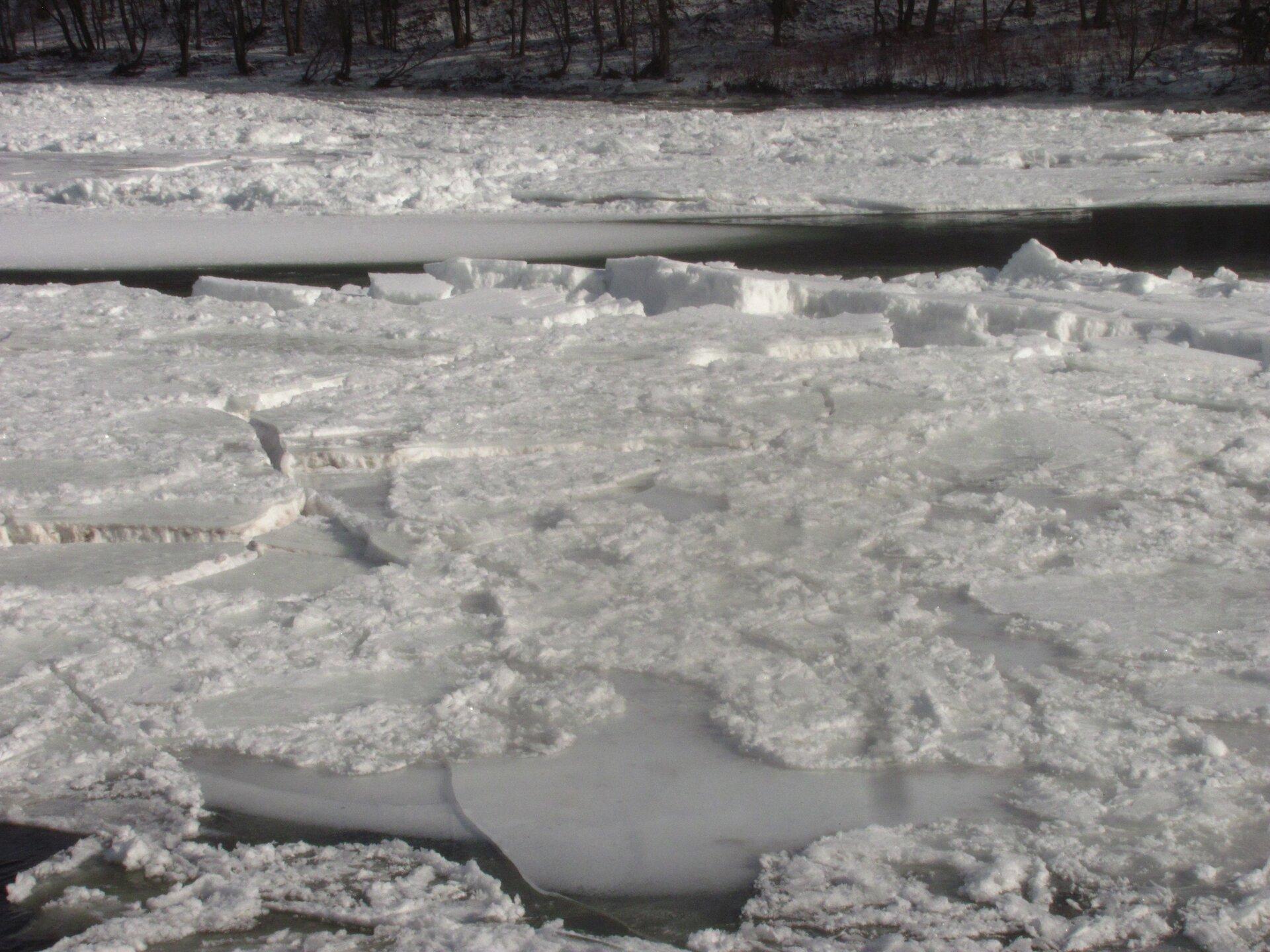 Zdjęcie przedstawia fragment rzeki. Zima. Dzień. Powierzchnia wody niewidoczna. Powierzchnia wody pokryta jest białym spękanym lodem. Duże płyty lodu mają kształt płaskich wielokątów. Krawędzie ostre, przeźroczyste. Niektóre kawałki lodu zachodzą na siebie. Grubość lodu wynosi nawet kilkadziesiąt centymetrów. Powierzchnia lodu pokryta warstwą śniegu. Wtle widoczny fragment rzeki bez unoszącej się kry na powierzchni. Woda wkolorze czarnym. Na drugim planie dalsza część rzeki ibrzeg. Cała powierzchnia rzeki aż po brzeg pokryta lodem iśniegiem. Brzeg rzeki wtle porośnięty gęsto drzewami.