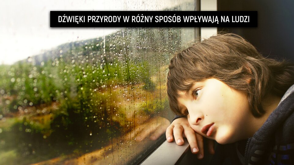 """Ilustracja przedstawia chłopca siedzącego wpociągu, spoglądającego przez okno. Za oknem jest szaro ipada deszcz. Chłopiec jest zamyślony. Prawdopodobnie nasłuchuje kapiącego deszczu. Na górze ilustracji znajduje się napis: """"dźwięki przyrody wróżny sposób wpływają na ludzi""""."""